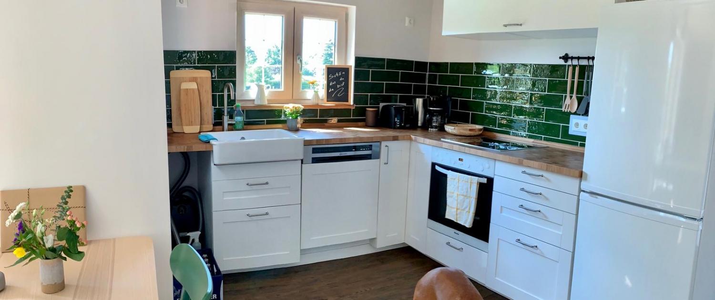 Küche mit Hund | Lytte Hytte