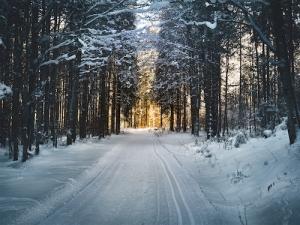 Winter in der Wingst | Lytte Hytte
